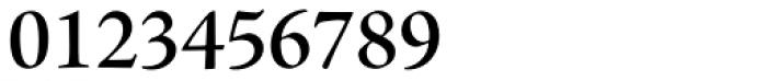 Adobe Jenson Pro SubHead SemiBold Font OTHER CHARS