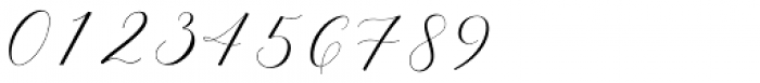 Adore Calligraphy Regular Font OTHER CHARS