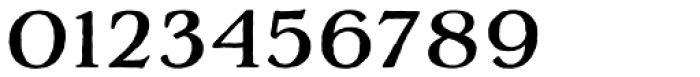 Adorn Serif Font OTHER CHARS