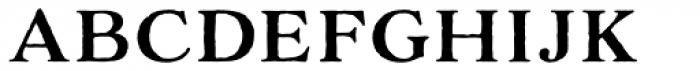 Adorn Serif Font LOWERCASE