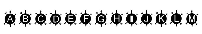 AEZ Native American Turtle Font UPPERCASE