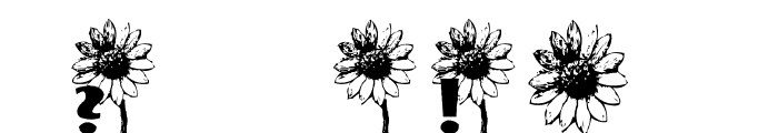 AEZ sunflower letters Font OTHER CHARS