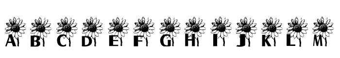 AEZ sunflower letters Font UPPERCASE