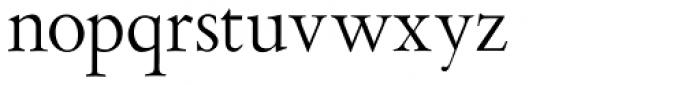 Aetna JY Pro Roman Font LOWERCASE