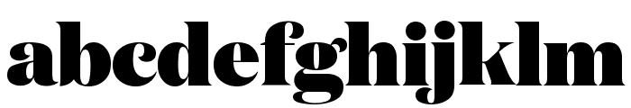 DomaineDisplay Black Font LOWERCASE