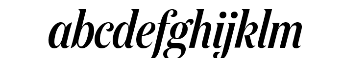 DomaineDisplayCondensed MediumItalic Font LOWERCASE