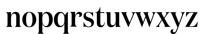 DomaineDisplayNarrow Medium Font LOWERCASE