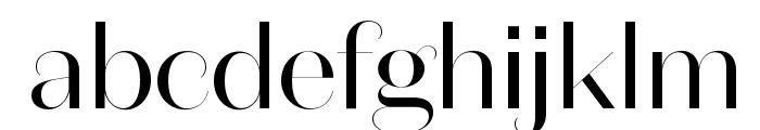 DomaineSansFine Regular Font LOWERCASE