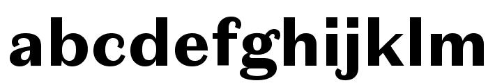 DomaineSansText Black Font LOWERCASE