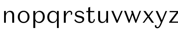 DomaineSansText Light Font LOWERCASE