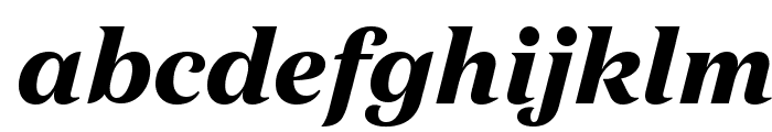 DomaineText BlackItalic Font LOWERCASE