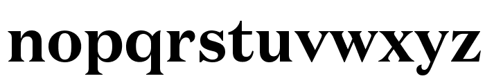 DomaineText Bold Font LOWERCASE