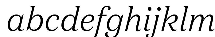 DomaineText LightItalic Font LOWERCASE