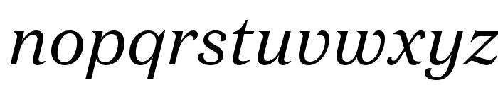 DomaineText RegularItalic Font LOWERCASE