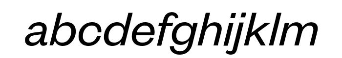 FoundersGrotesk RegularItalic Font