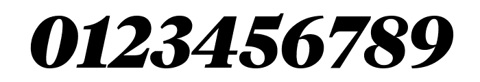 TiemposHeadline BlackItalic Font OTHER CHARS