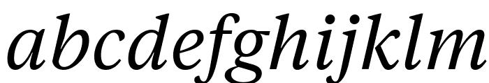 TiemposTextWeb RegularItalic Font LOWERCASE