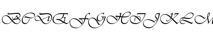 Agnez Lovely Italic Font UPPERCASE