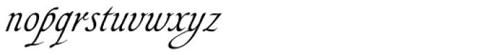 Agedage Cancelleresca Font LOWERCASE