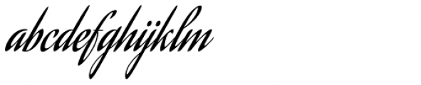 Aguafina Script Pro Font LOWERCASE