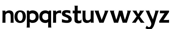 AIK-ErikHolm Font LOWERCASE