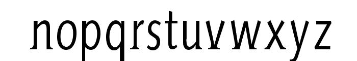 AidaSerifa-Condensed Font LOWERCASE