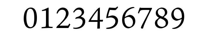 AJensonPro-LtCapt Font OTHER CHARS