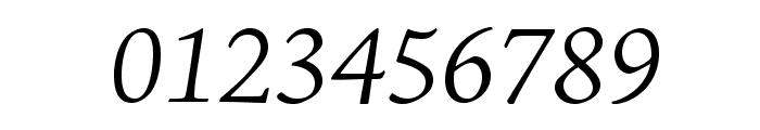 AJensonPro-LtIt Font OTHER CHARS