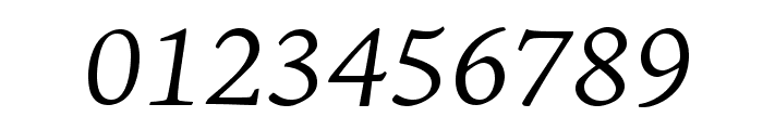 AJensonPro-LtItCapt Font OTHER CHARS