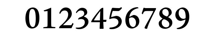 AJensonPro-Semibold Font OTHER CHARS