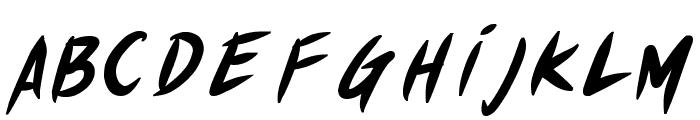 Akiba Punx Bold Italic Font LOWERCASE