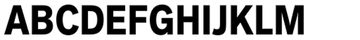 Akzidenz-Grotesk Next Cond Bold Font UPPERCASE