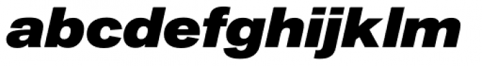 Akzidenz-Grotesk Next Ext ExtraBold Italic Font LOWERCASE