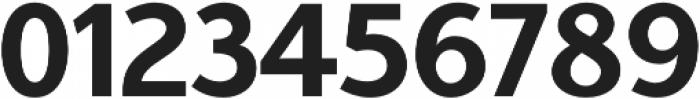 Aleante Sans otf (700) Font OTHER CHARS