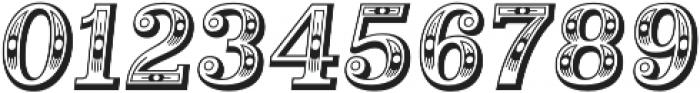 Alta Mesa Regular Italic otf (400) Font OTHER CHARS