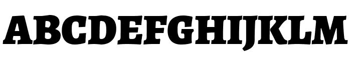 Alegreya Black Font UPPERCASE