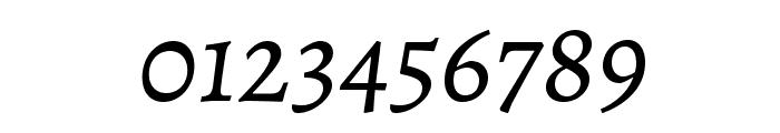 Alegreya Italic Font OTHER CHARS