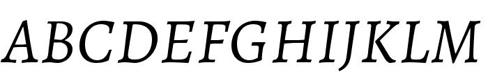 Alegreya Italic Font UPPERCASE