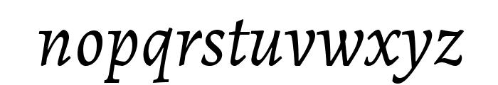Alegreya Italic Font LOWERCASE