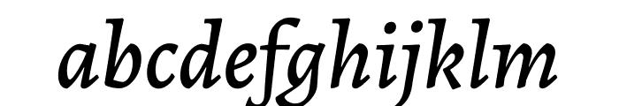 Alegreya Medium Italic Font LOWERCASE