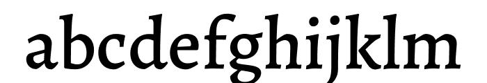 Alegreya Medium Font LOWERCASE