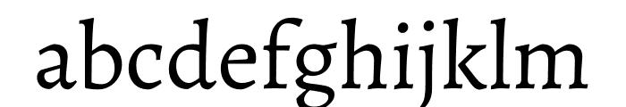Alegreya Regular Font LOWERCASE