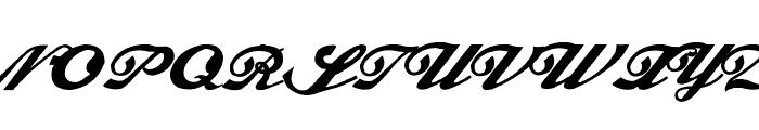 Alfaowner Script Bold Italic Font UPPERCASE