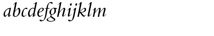 Aldine 401 BT Italic Font LOWERCASE