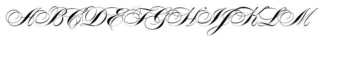 Alexandra Script Normal Font UPPERCASE