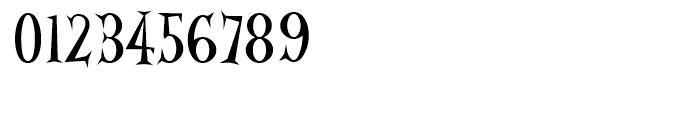 Alleycat Regular Font OTHER CHARS