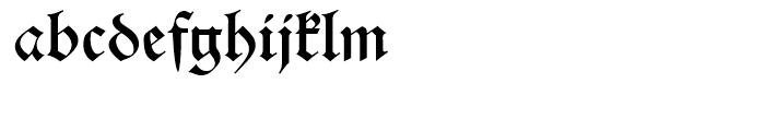 Alte Schwabacher Standard D Font LOWERCASE