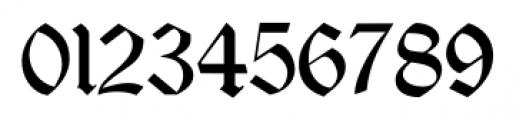 Albrecht Duerer Fraktur Pro Regular Font OTHER CHARS