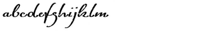 ALS FinlandiaScript Frost Font LOWERCASE