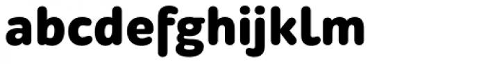 ALS Schlange Sans Black Font LOWERCASE